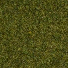 Noch 50220 Gräs, äng, 2.5 mm, 100 gram i påse