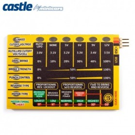 Castle 010006300 Quick Field Programmer for Car
