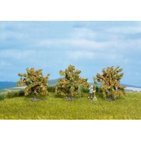 Noch 25114 Apelsinträd, 3 st, ca 40 mm höga
