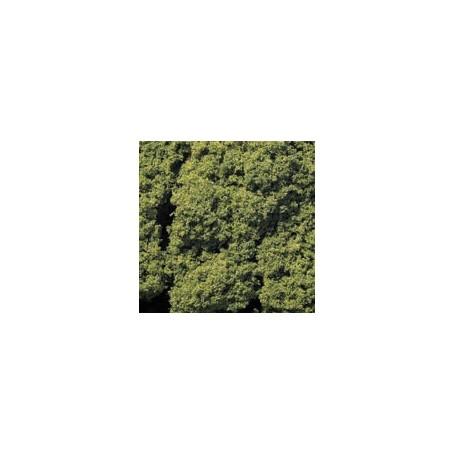 Noch 95560 Foliage, grön, 70 gram