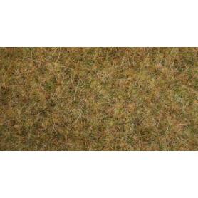 Noch 00416 Gräsmatta, fält, med 6 mm och 12 mm långa gräsfiber