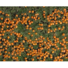 """Faller 180459 Landskapssegment """"Pumpkin field"""""""