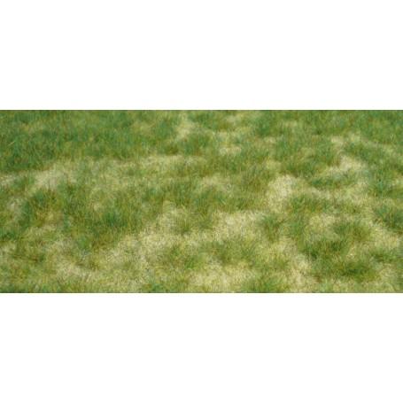 Heki 1842 Vildgräs, sommargräs, mått 45 x 17 cm