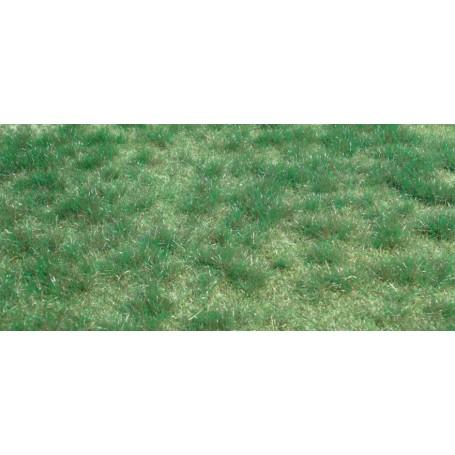 Heki 1843 Vildgräs, myrmark, mått 45 x 17 cm