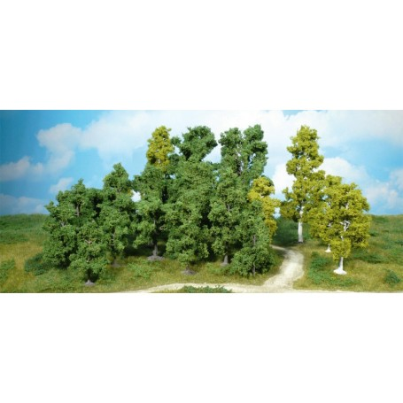 Heki 1951 Lövträd, 14 st, 5-12 cm