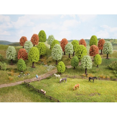 Noch 26906 Lövträd, våren, 10 st, 5-9 cm