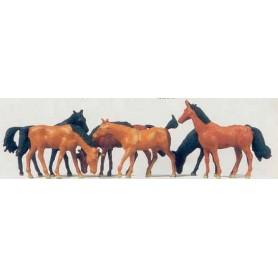 Merten Z 2408 Hästar, 12 st