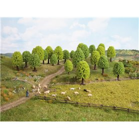 Noch 26801 Lövträd, 25 st, 5-9 cm höga