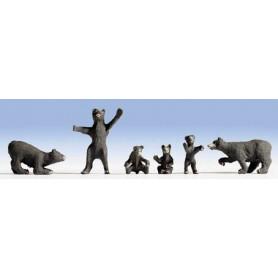 Noch 36770 Björnar, 6 st