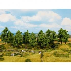 Noch 24601 Lövträd 16 st, 10-14 cm höga