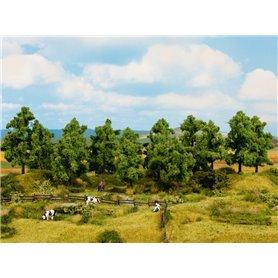 Noch 24602 Lövträd, 6 st 14-18 cm höga