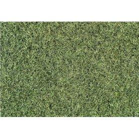 Heki 33540 Vildgräs, statiskt, vinter, 75 gram, 5-6 mm långt