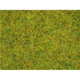 Noch 08310 Gräs, ängsgräs, 2,5 mm, 20 gram påse