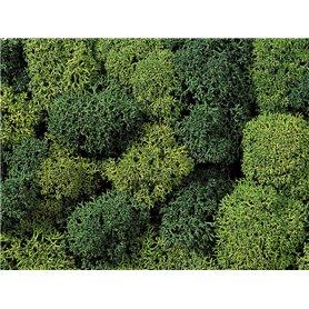 Noch 08610 Mossa, grön, 35 gram, påse