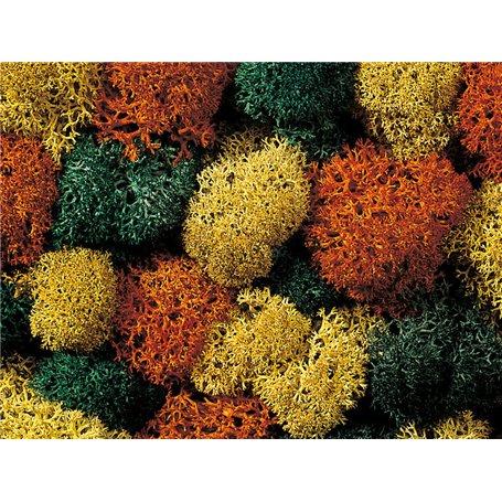 Noch 08620 Mossa, höstfärger, 75 gram, påse