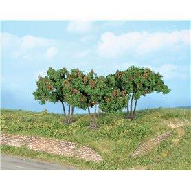 Heki 19112 Mullbärsträd, 3 st, 7 cm
