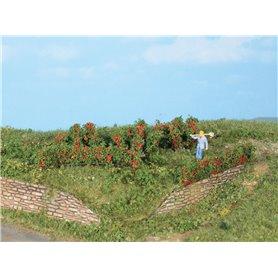 Heki 19125 Rosenhäckar och buskar, 10 st, 0,7 - 3 cm höga