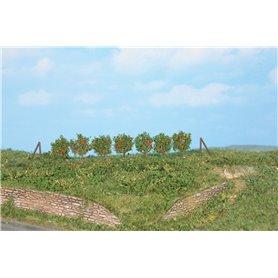 Heki 19135 Spaljéträd, 36 st, 2,5 cm höga