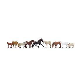 Noch 36761 Hästar, 9 st